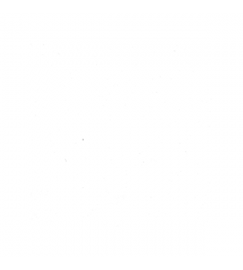 sottopiatto margherita tnt bianco 30 cm 20pz