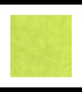 Tovaglia in TNT a Rotolo Verde Lime 25m