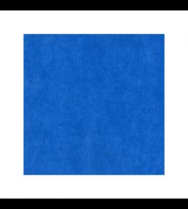 Tovaglia in TNT Blu 160X240cm